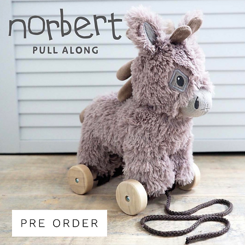 Norbert Pull Along Toy