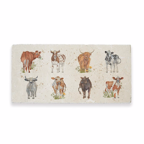 THE BRITISH COLLECTION: COWS SHARING