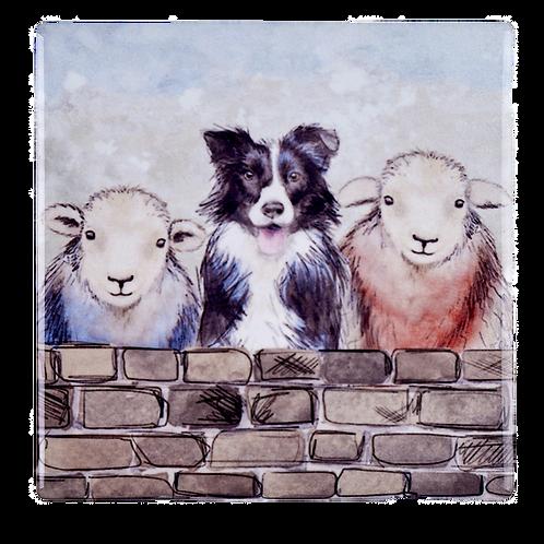 SHEEP & DOG COASTER S/4