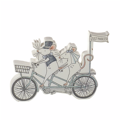 Just Married Mr & Mrs Mouse On Tandem