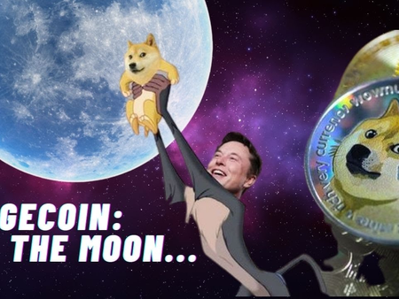 To The Moon! What's Up With Dogecoin?