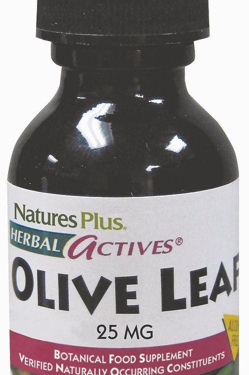 Nature's Plus Olive Leaf 30ml