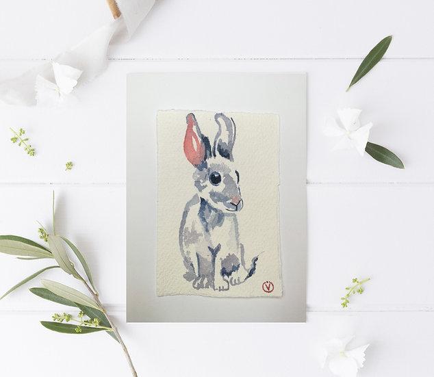 My lovely rabbit