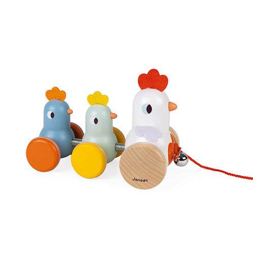צעצוע משיכה משפחת התרנגולות