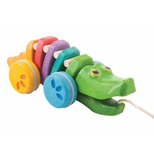 תנין קשת גרירה צבעוני