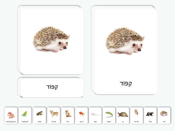 כרטיסיות חיות מחמד