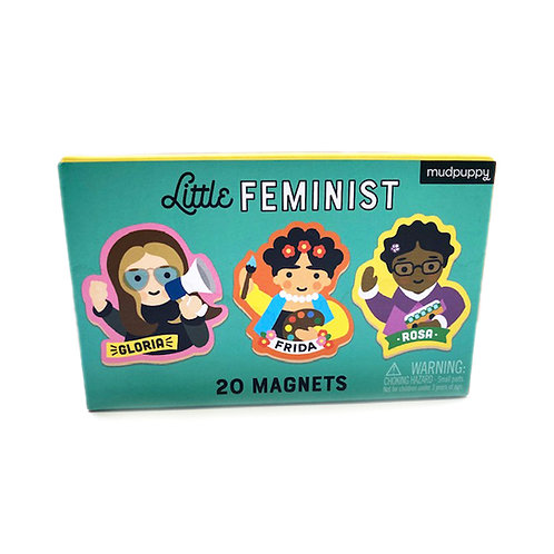 מגנטים פמיניסטיים
