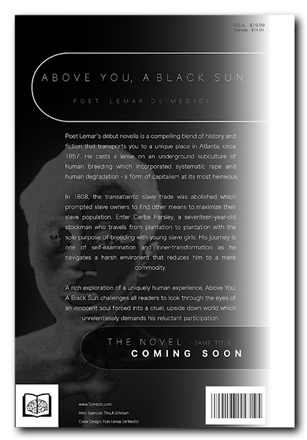 Above You, A Black Sun Back Cover