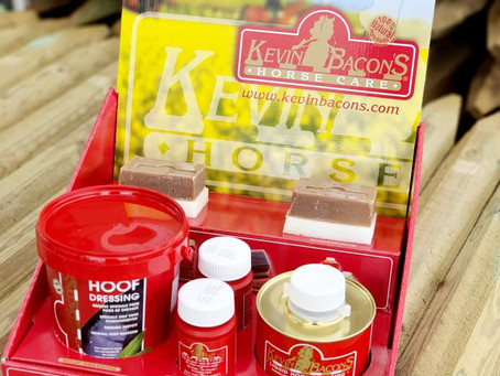 Neu bei Reiterlive: Kevin Bacon's Hoof Care 🐴💥😍
