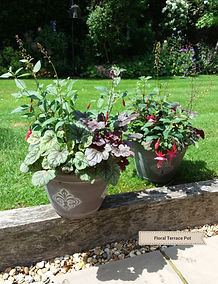 Floral Terrace Pot.jpg