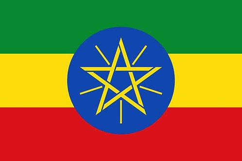 41. Ethiopia