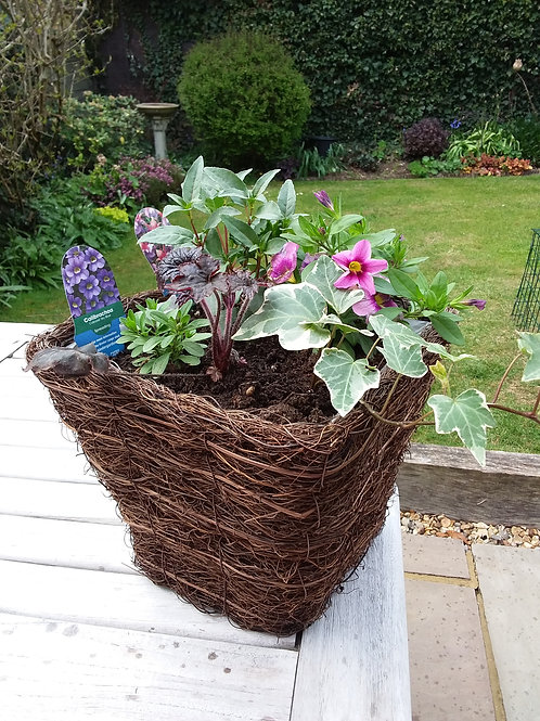 Square Planted Terrace Container