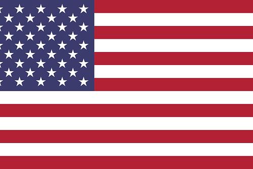 100. USA