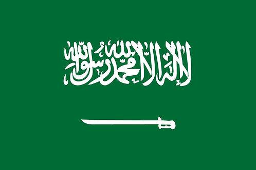 93. Saudi Arabia