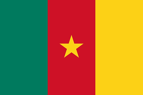 24. Cameroon