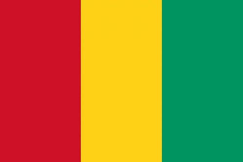 52. Guinea