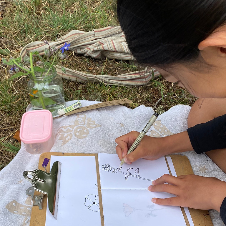 Homeschool Art & Science; Session 1; Ages 8-12