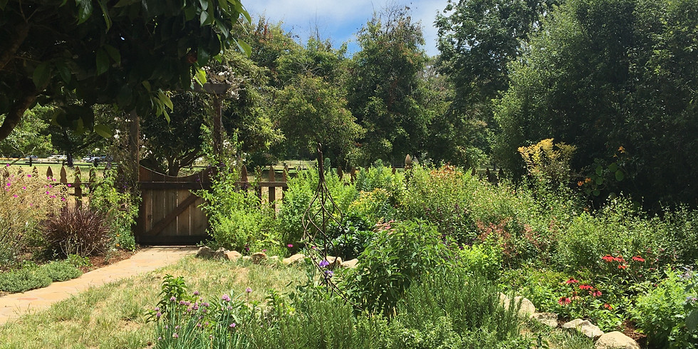 Summer; 2021: Art & Nature; Drawing & Painting in-person with Yvette