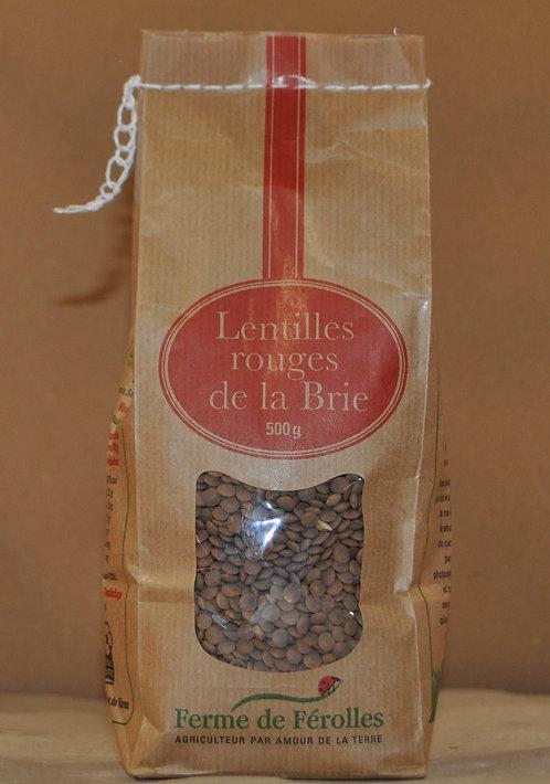 Lentilles.Rouges