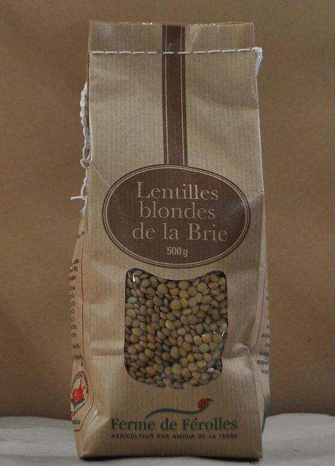 Lentilles.Blondes de la Brie