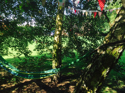 The Limes Campsite Image 15