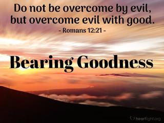 Bearing Goodness