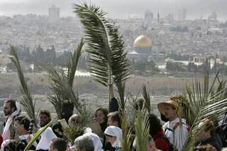 Procession of Palms