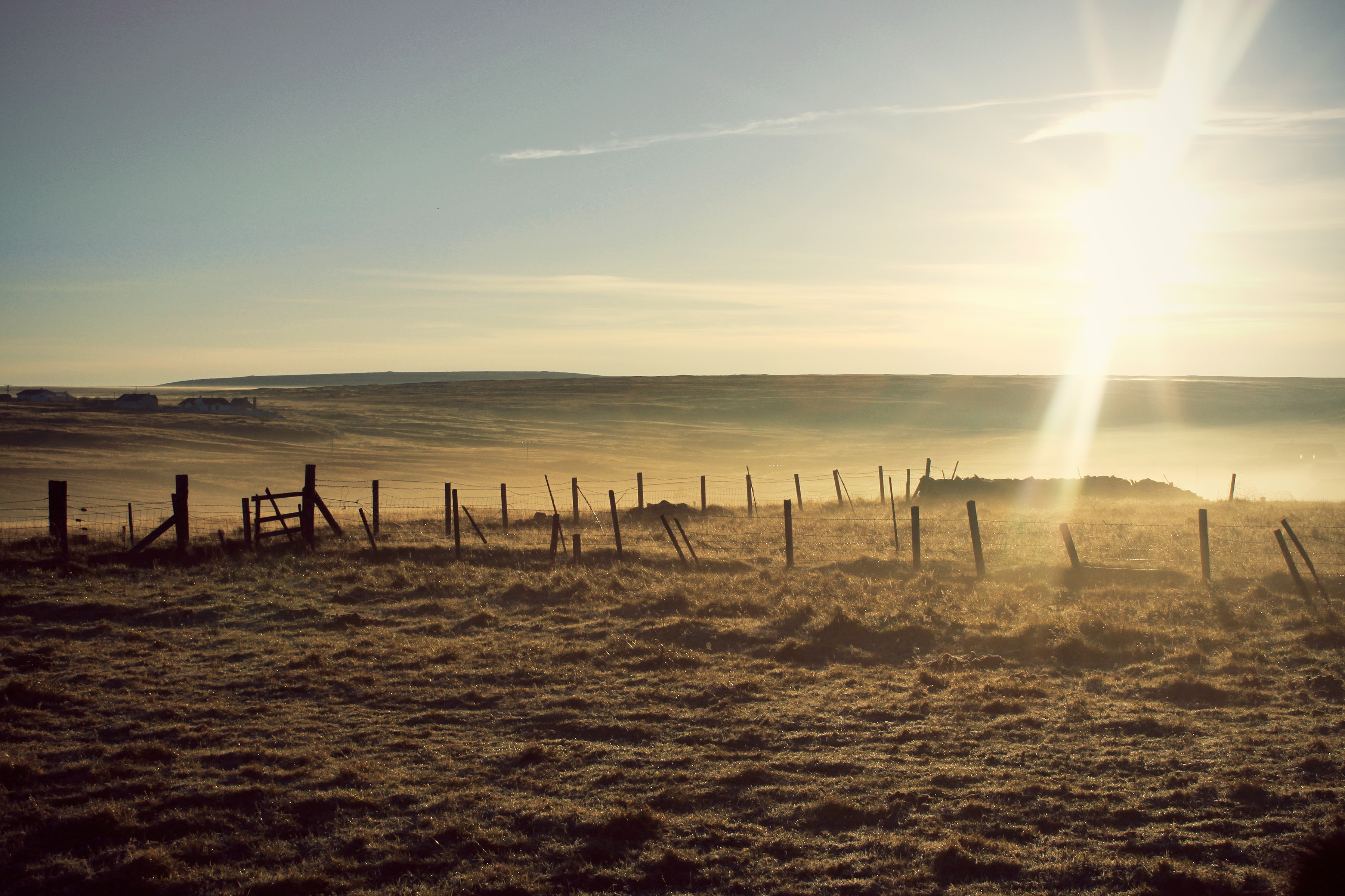 Morning on the Croft