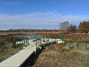 Eagle Marsh Floating Trail