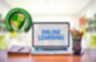 online learning pic.png