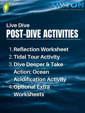 Post-Dive Activities Outline.jpg