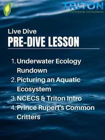 Pre-Dive Lesson Outline.jpg