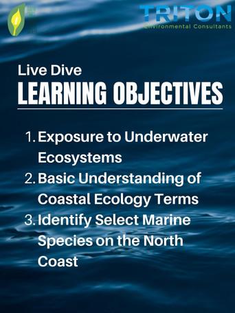Learning Objectives.jpg