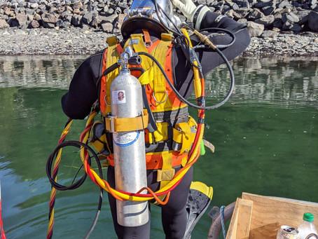 NCECS & Triton Live Dive Collaboration