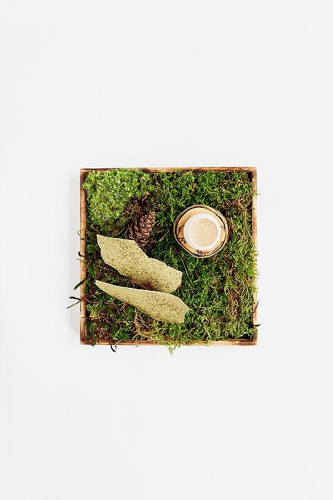 Snacks im HACO St. Pauli, Hamburg. Cracker auf Moos. Nachhaltige Gastronomie
