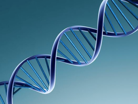 Organisations don't have DNA, people do