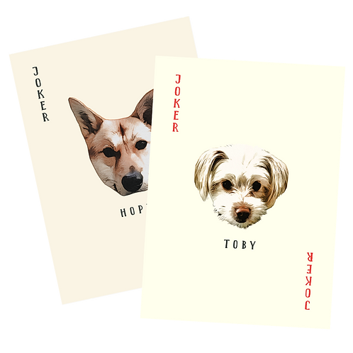 DoVE Project First Edition Playing Cards