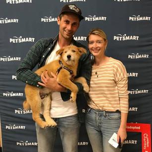 International Rescue Dog Day!
