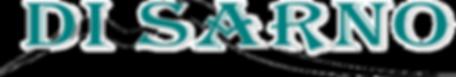 DI SARNO CAR SERVICE  logo nuovo.png