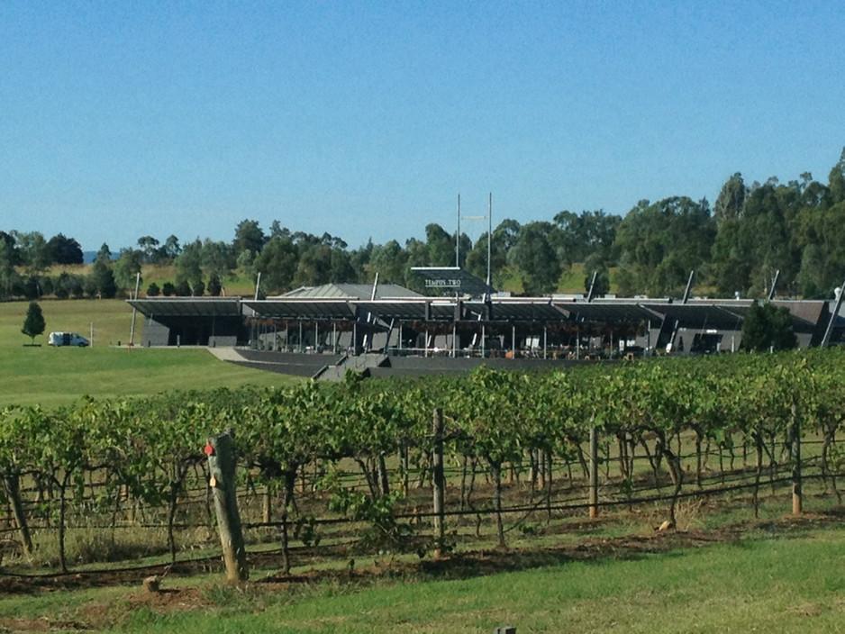 tempus-two-winery-pokolbin-vineyards-win
