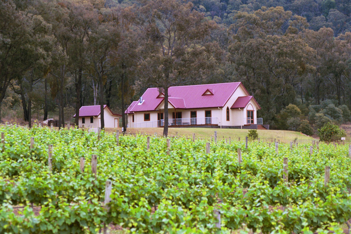 vineyard & Cellar Door.jpg
