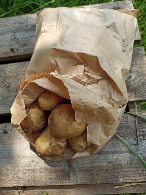 marabel Kartofler