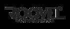 roqvel_logo png.webp