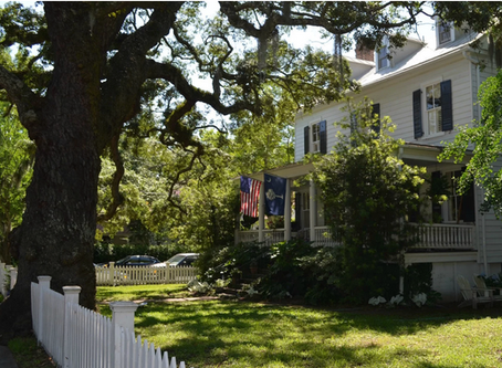Why Is Everyone talking About the Old Village Neighborhood of Mount Pleasant, SC?