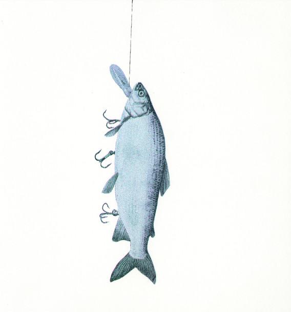Fish Luring #2