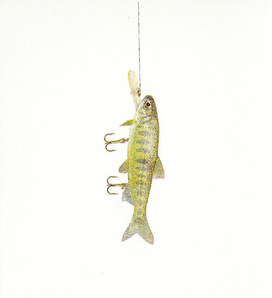 Fish Luring #1