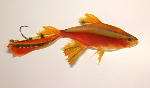 Cardinal Tetra Fly - cutout WIP