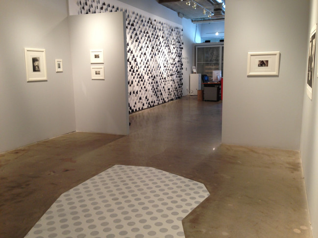 Patterns of Rememory 2013 Exhibition at SNAP Gallery