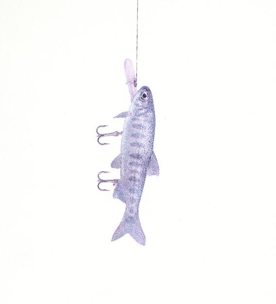 Fish Luring #1 v.II
