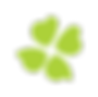 WLDC_Icons_Shamrock.png